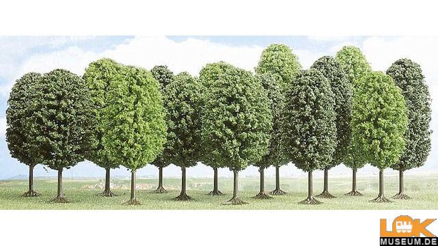 12 Laubbäume