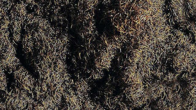 Streufaser waldbraun 35g