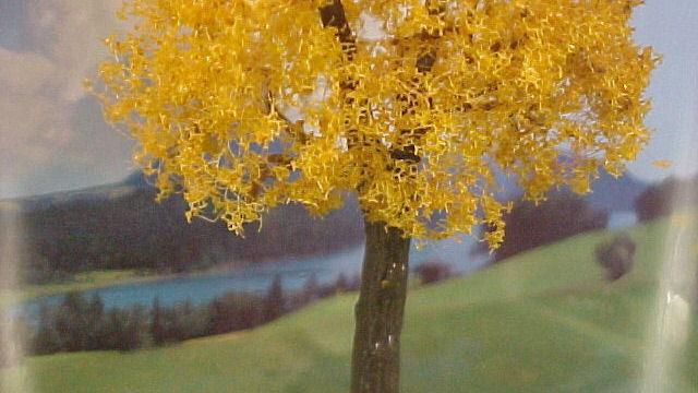 PREMIUM Esche Herbstlaub
