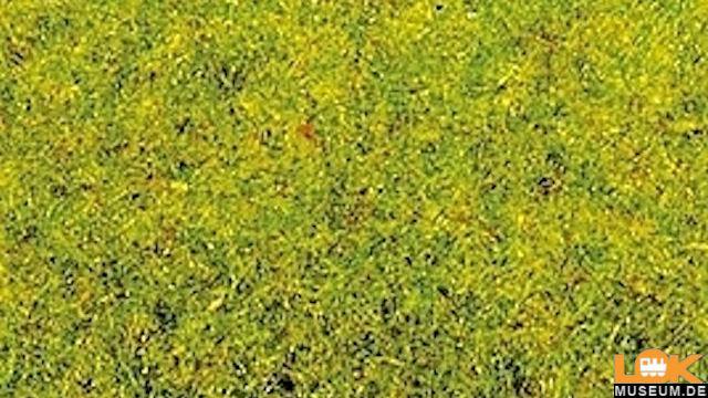 Frühlingswiesen-Gras 2,5mm 20g
