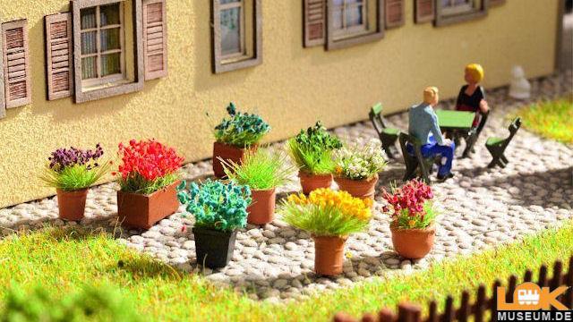 Blumen in Blumentöpfen