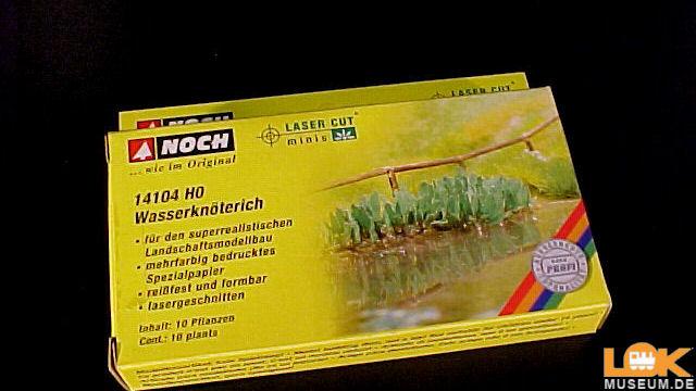 Wasserknöterich 10 Pflanzen