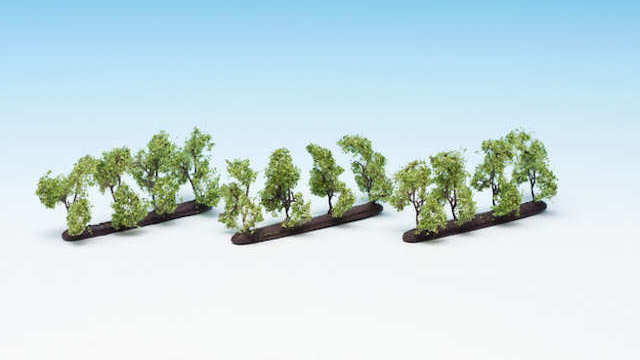 Plantagenbäume