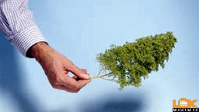 Naturbäume